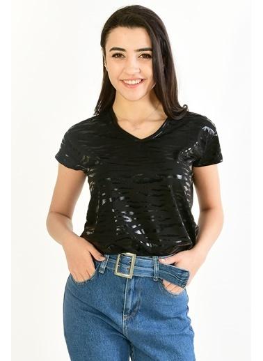 Modaplaza Kadın Zebra Desenli Siyah Tişört Siyah